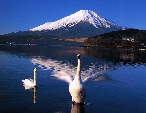 初夢で富士山をみましたか?