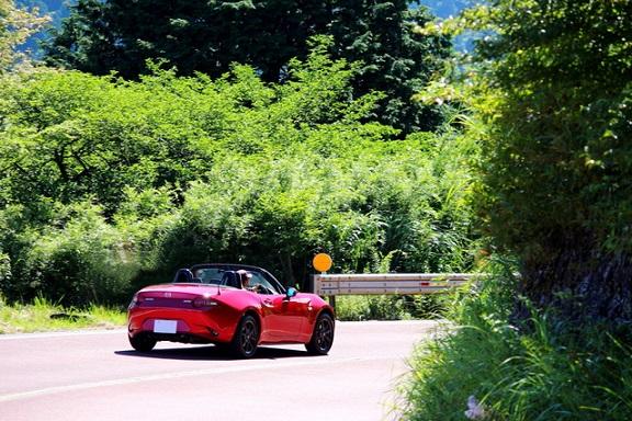 夏のドライブ、最高!