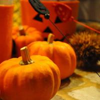 ハロウィーンの代名詞でもあるかぼちゃ